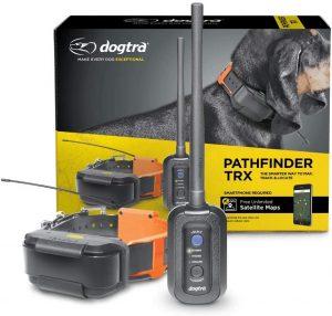 Dogtra Pathfinder TRX 9-Mile 21.