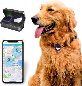 PETFON Pet GPS Tracker.