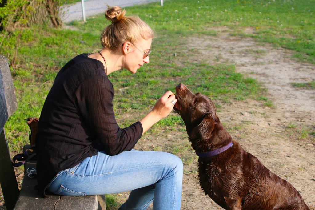 Woman giving treat to dog.