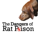 HOW TO Treat Your Dog for Rat Poison Ingestion