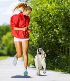 Dogs can keep their owners fit and healthy